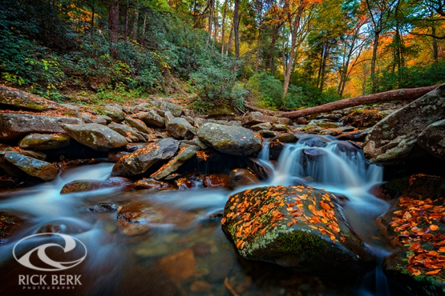 Autumn on the Chimney Tops Trail