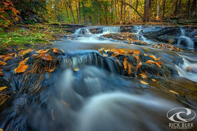 Autumn Cascade in Vaughan Woods