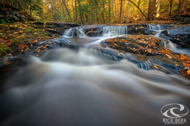 Fall Morning at Vaughan Brook